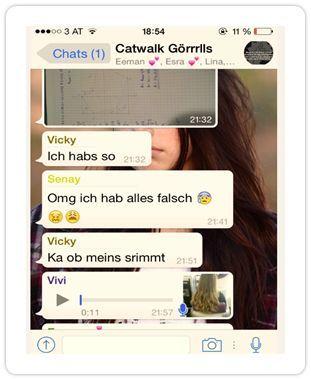 Bild eines Chatverlaufs auf WhatsApp zur Lösung einer Mathematik-Hausübung.