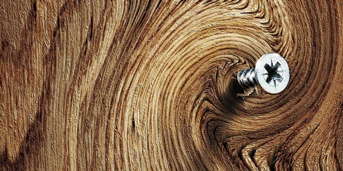 Schraube in Holz
