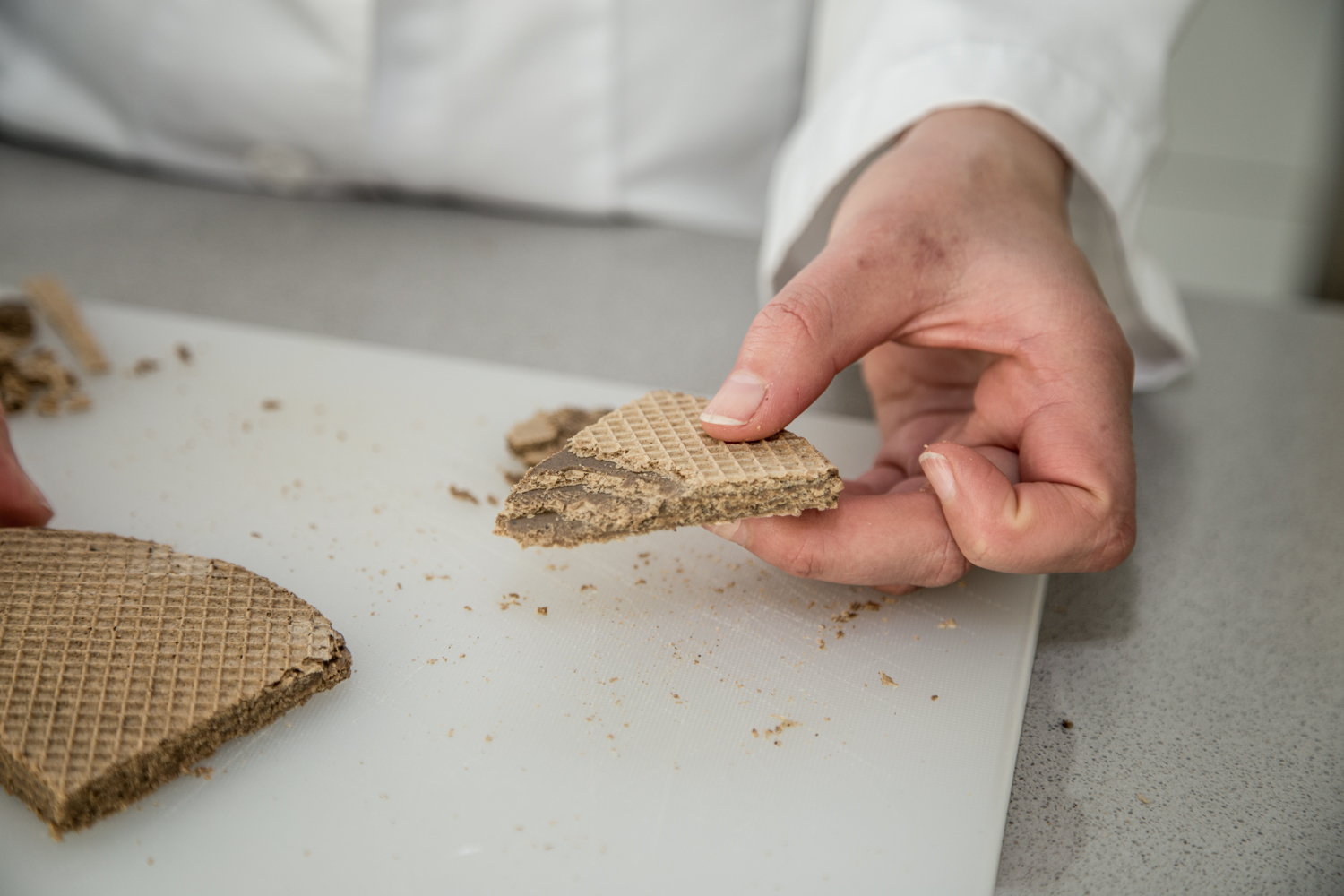 The benefits of insects are being explored across the food chain. Here: insect flour waffles from a previous project. (© FH JOANNEUM / Manfred Terler)