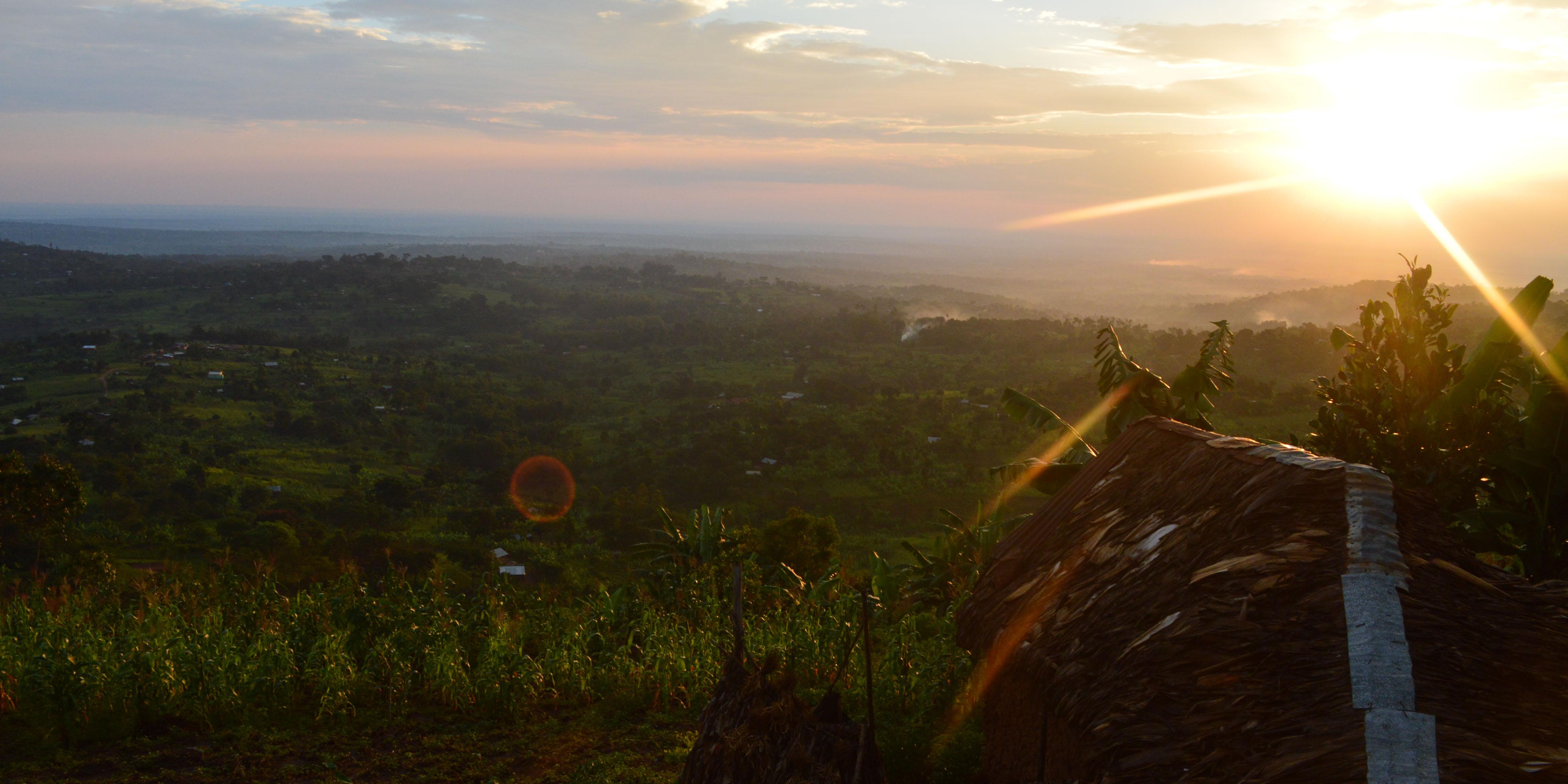 Bild von Busane, Mbale