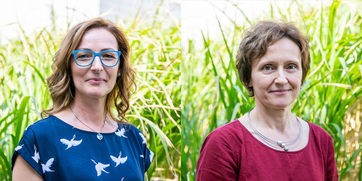 Die beiden Diätologinnen Maria Tropper und Andrea Fassl bieten kostenlose Ernährungsberatungen im Bezirk Hartberg-Fürstenfeld bzw. Südoststeiermark an.