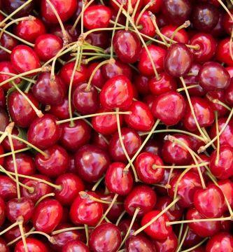 Nachhaltiges Lebensmittelmanagement 1