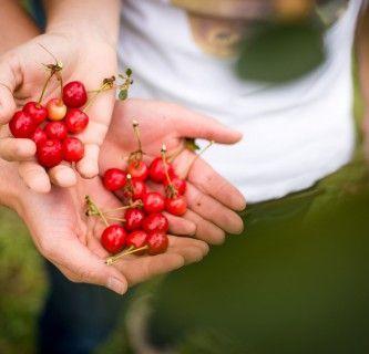 Nachhaltiges Lebensmittelmanagement 18